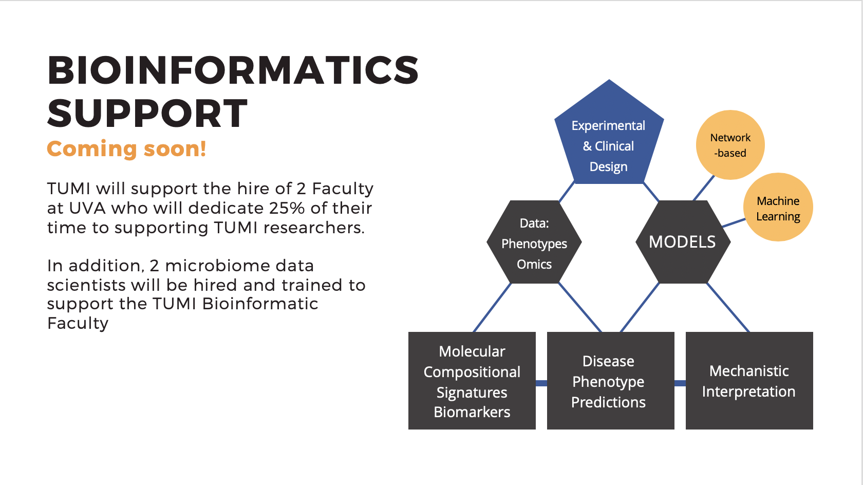 Bioinformatics Support